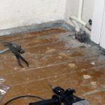 Как выровнять деревянный и бетонный пол под линолеум своими руками: инструкция с видео