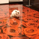 изображение роз на полу